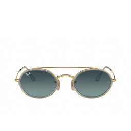 Ray-Ban® Oval Sunglasses: RB3847N color Arista 91233M.
