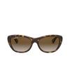 Ray-Ban® Square Sunglasses: RB4227 color Light Havana 710/T5 - product thumbnail 1/3.