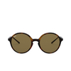 Ray-Ban® Round Sunglasses: RB4304 color Havana 710/73 - product thumbnail 1/3.