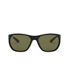 Ray-Ban® Square Sunglasses: RB4307 color Black 601/9A - product thumbnail 1/3.