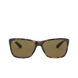 Ray-Ban® Sunglasses: RB4331 color Light Havana 710/73.
