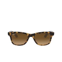 Ray-Ban® Sunglasses: RB4640 color Light Havana 710/M2.