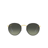 ray-ban-round-full-color-rb3447jm-919671