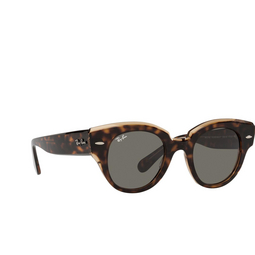 ray-ban-roundabout-rb2192-1292b1 (1)