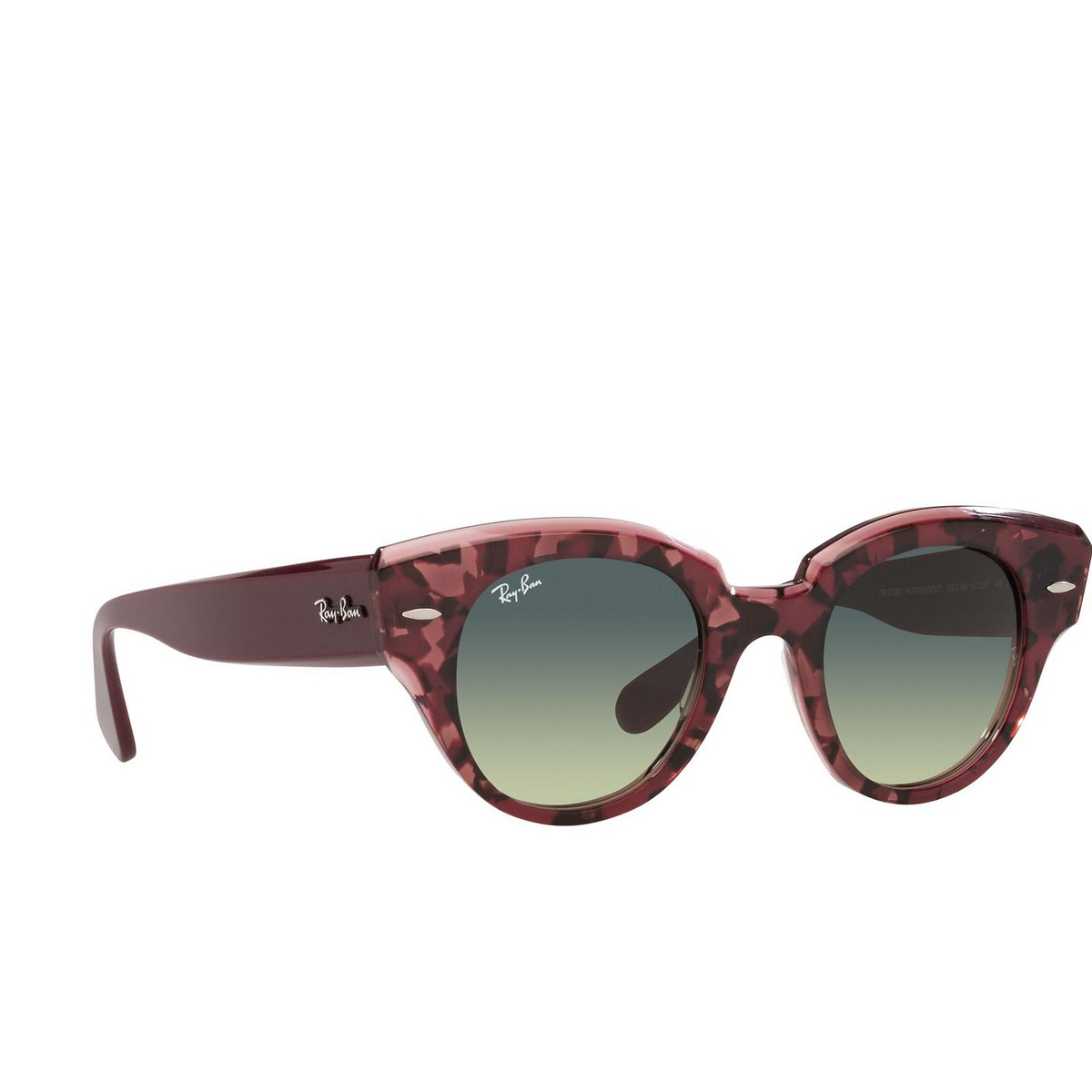Ray-Ban® Round Sunglasses: Roundabout RB2192 color Havana On Transparent Purple 1323BH.