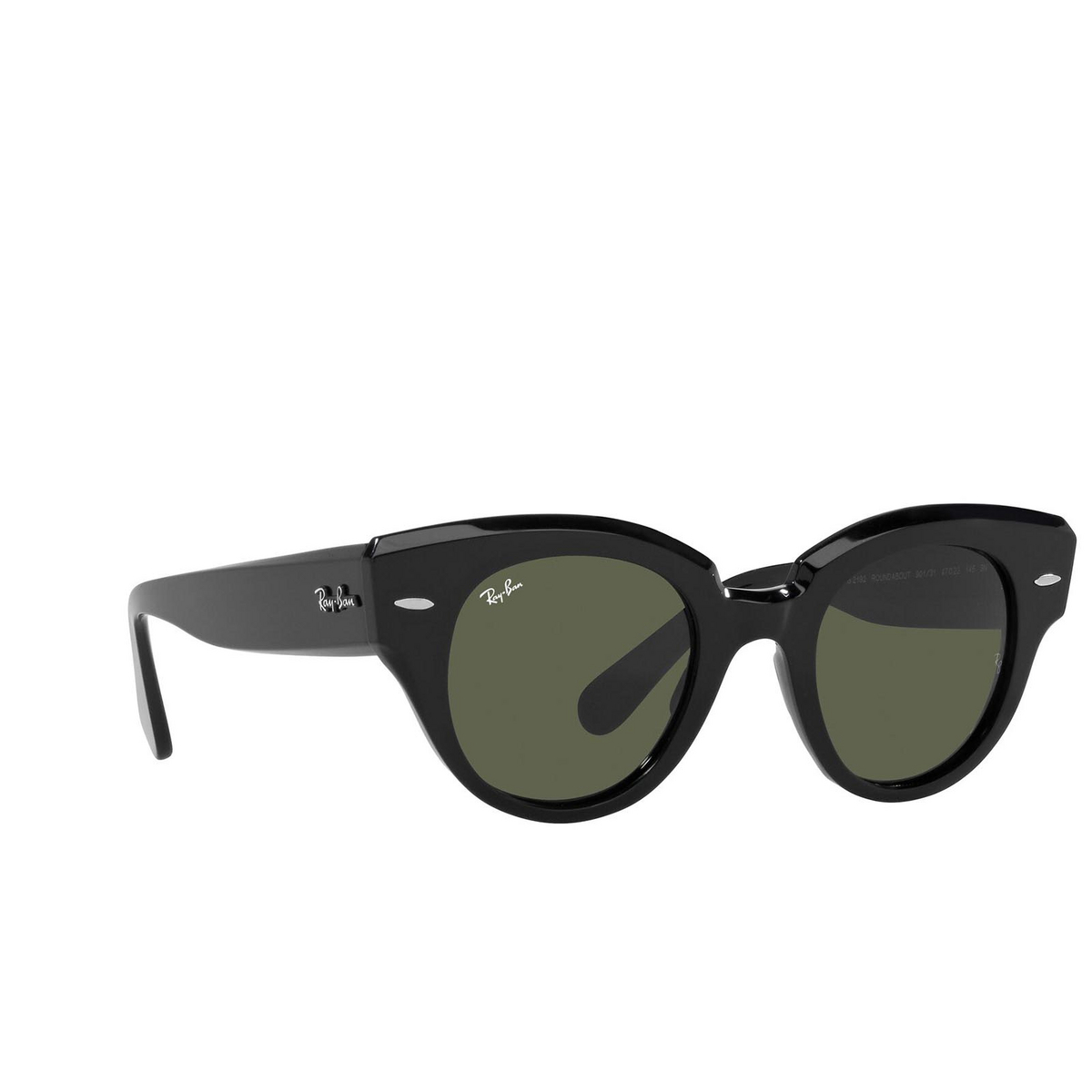 Ray-Ban® Round Sunglasses: Roundabout RB2192 color Black 901/31.