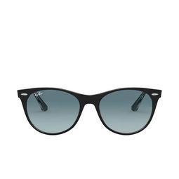 Ray-Ban® Sunglasses: Wayfarer Ii RB2185 color Black On Transparent 12943M.