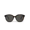 Saint Laurent® Round Sunglasses: SL 317 color Havana 002 - product thumbnail 1/3.