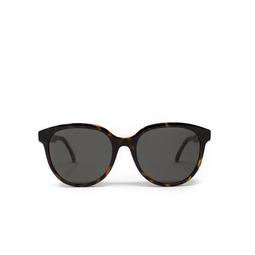 Saint Laurent® Round Sunglasses: SL 317 color Havana 002.