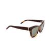 Saint Laurent® Cat-eye Sunglasses: SL M79 color Havana 002 - product thumbnail 2/3.