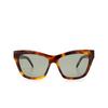 Saint Laurent® Cat-eye Sunglasses: SL M79 color Havana 002 - product thumbnail 1/3.