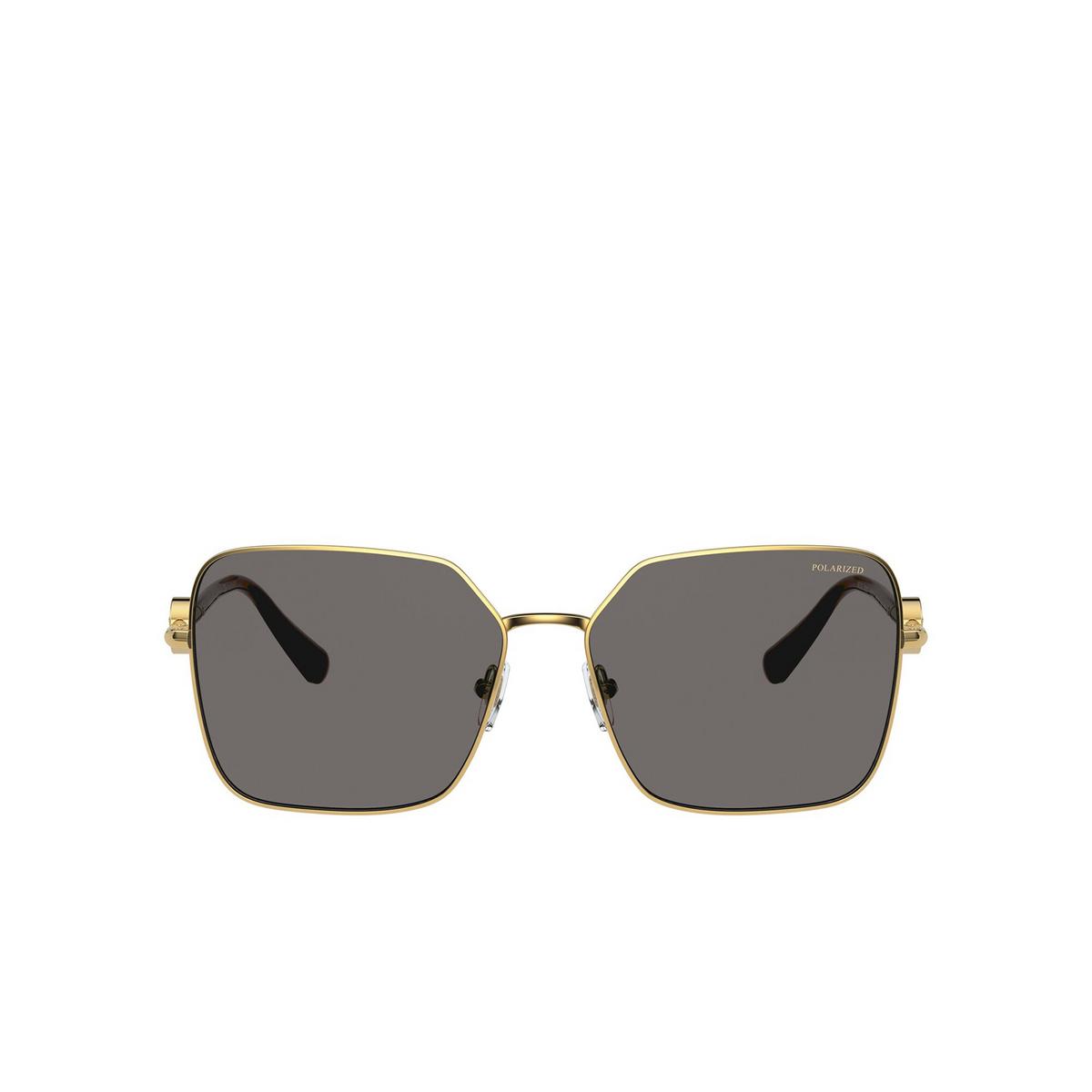 Versace® Square Sunglasses: VE2227 color Gold 100281 - front view.